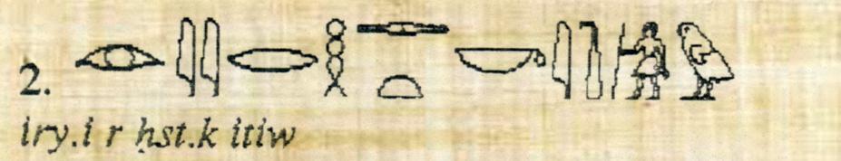 Lignes-Hieroglyphe-p2