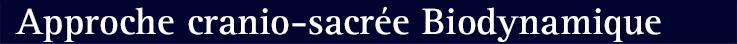 Approche-Cranio-sacree-737x44